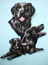 IRON-ON EMBROIDERED PATCH - FLAT COATED RETRIEVER - DOG