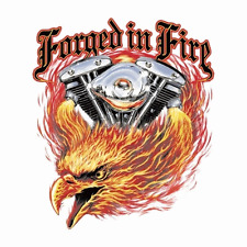 FORGET IN FIRE  BIKER  DECAL   NEW