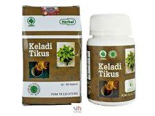 60 Count  Keladi Tikus Organic Typhonium Flagelliforme Rat Rodent Tuber Herb