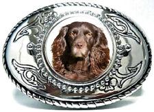 Boykin Spaniel Dog Canine Hound Hunting Foxhound Be Dog Canine Hound Hunting Fox