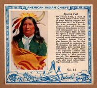 1952 Red Man American Indian Chiefs #14 / Spotted Tail / Dakota / T129