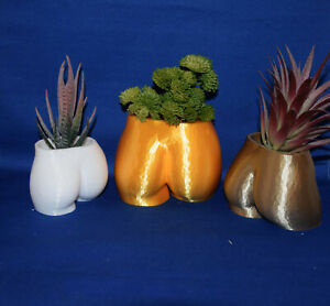 Woman Booty ~ Torso ~ Female Butt~ Flower Succulent Air Plant Pot Planter Figure