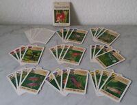 altes Quartett Kartenspiel Aquarienfische VEB Altenburger Spielkartenfabrik DDR