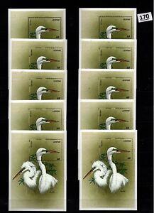 /// 10X LESOTHO - MNH - BIRDS