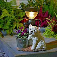 Solar Powered LED Westie & Robin Lantern Light Decorative Garden Dog Ornament