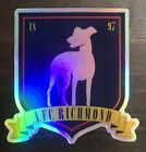 AFC Richmond STICKER Ted Lasso Decal vinyl hat shirt soccer laptop holographic