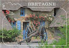 B50557 Flowers fleurs Bretagne Cottage garden panier cart  france