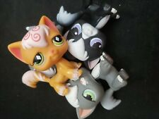Littlest Pet Shop lps Lot 2 Random angora longhair cats + 1Free accessory