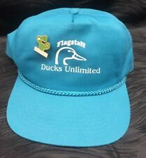 Vintage Ducks Unlimited Flagstaff Arizona Hat Cap with Pin Turquoise Blue Green