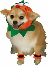 Rubie's Pet Costume, Headpiece with Cuffs Pumpkin Medium