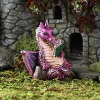 Fairy Garden Miniature Figurines: Dragons, Unicorns, Gnomes, Trolls, Fiddlehead