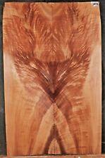 Fire Bird Maple Burl Guitar Wood 10155 Luthier Solid BodyTop set 28x 18x .500
