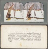"[34214] 1899 T.W. INGERSOLL ""THE DROP ON A BUNCH OF ELK"" STEREOVIEW (#463)"