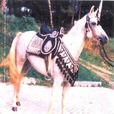 Arabian Horse Saddle, Egyptian/Syrian Dancing Saddle with Breast Collar + Bridle