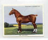(Jl787-100) Players,Types Of Horses,The Hackney ,1939 #10