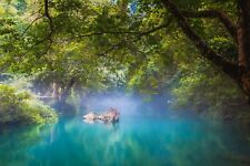 WOODLAND RIVER WATER LANDSCAPE CANVAS PICTURE POSTER PRINT UNFRAMED 6873