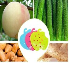 multifunctional fruit vegetable brush