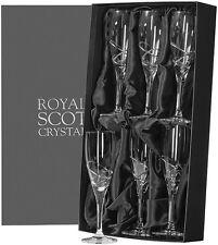 """ROYAL SCOT CRISTAL """"Skye"""" 6 flûtes à champagne-coffret cadeau (nouveau)"""
