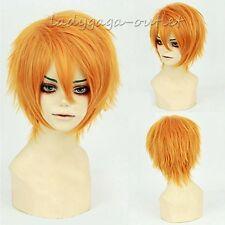 Unisex Short Straight Cosplay Wig Anime Hair Tail Full Wig Costume Party Blue #A