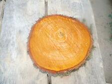 Baumscheibe, Holzscheibe, 28-30x 3 cm, Erle