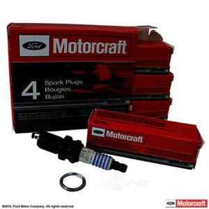 Spark Plug-VIN: N MOTORCRAFT SP-445