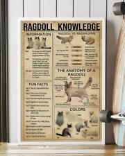 Ragdoll Knowledge Cat Rag Poster Glossy No Frame super sharp Home Wall Art Decor