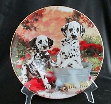 You Missed A Spot Those Delightful Dalmatians Dog Plate Collection Hamilton