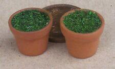 1:12 Scale 2 Dark Filled 1.3cm Terracotta Style Pot Dolls House Garden Accessory