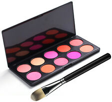 10 Color CONTOUR Blush Palette 3D SATIN SHIMMER & Free Kabuki Contour Brush