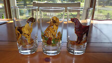 Hunting Dog themed tumblers Drinking glasses 3 12 oz weighted bottom glasses
