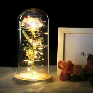Rose Geschenk Ewige Rose in 24 Karat Gold Glas Lampe Dome LED Licht Geschenk DE
