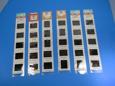 Vintage Panorama & Lowell Park Color Travel Slides Lot of Six New Old Stock VS16