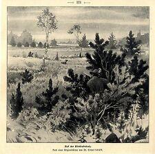DR. Ernst Schäff sulla Birkhahn Balz un caccia-soggetto Histor. pressione V. 1900