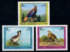 Afghanistan: Birds,Himalayan snow cock, Pheasant,1973,MNH