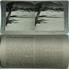 Keystone Stereoview WAIKIKI BEACH, HAWAII TERRITORY Version A 600/1200 Card Set