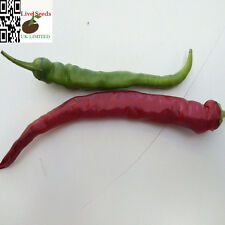 Hot Chilli Pimienta Cayenne red Capsicum annuum 100 semillas-vegetal más finos