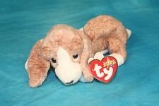 TY SNIFFER the DOG BEANIE BABY - MINT CONDITION with MINT TAGS