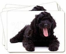 Black Labradoodle Dog Picture Placemats in Gift Box, AD-LD2P