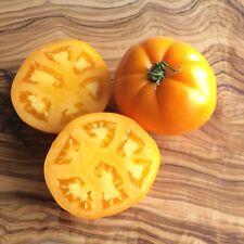 Persimmon orange Fleischtomate süß-cremiger Geschmack Persimon