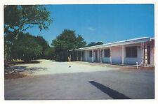 Citrus Lane Apartments SAINT ST PETERSBURG FL Vintage Florida Postcard