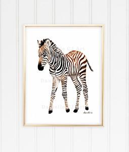 Baby Zebra Print - watercolor zebra prints, watercolour nursery art