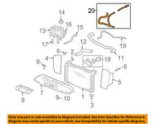 GM OEM Radiator Coolant-Recovery Tank Bottle Overflow Hose 15792820