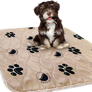 Best Defense Washable Pee Pads for Dogs, 2- Pack Large 30 x 32 Reusable Dog, and