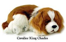 Cavalier King Charles - Il cucciolo che respira - PERFECT PETZZZ