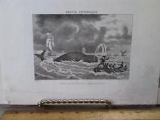 Vintage Print,PECHE DE LA BELIENE,France Pittoresque,19th Cent