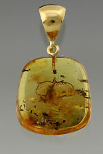 Fossil CADDISFLY Genuine BALTIC AMBER Silver Gold Plated Pendant 4.2g p160818-35
