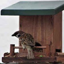 comedero para pájaros mossie