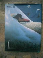 Vincenzo Martegani Il lago dei cigni Credito Valtellinese 1997
