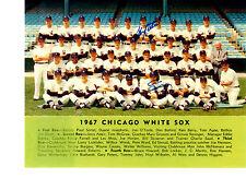 1967 CHICAGO WHITE SOX TEAM 8X10  PHOTO  WARD WILHELM  BASEBALL MLB HOF