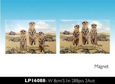 Meerkat Tin Fridge Magnet 80x55cm set of 2 LP16088